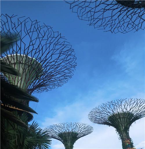 新加坡表示将评估美国莫德纳疫苗,安全性和有效性