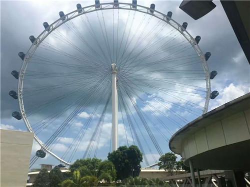 新加坡转机最新政策全面解读,不可错过!